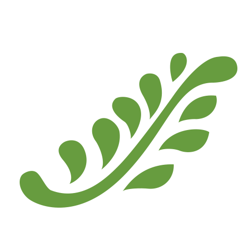 rosmarino-icona-trasparente 2